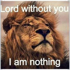 Jesus Christ I love you. Thank you for dying for ME and giving me eternal life. Life is about you the great I AM! In Jesus name I pray. Faith Quotes, Wisdom Quotes, Bible Quotes, Qoutes, God's Wisdom, Strong Quotes, Music Quotes, Positive Quotes, Lion Quotes