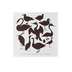 Create silhouettes of birds...similar to this Land of Nod print....