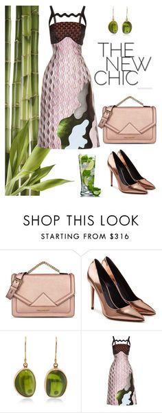 """Chic-a!"" by schenonek ❤ liked on Polyvore featuring Karl Lagerfeld, Alexander Wang, Jamie Joseph and Mary Katrantzou"