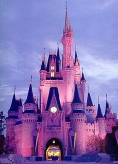 Disney World...I want to go back!!!