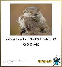 よしよし 動物 - Google 検索