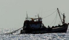 La mobilisation contre le chalutage en eaux profondes n'aura pas été entendu par le Parlement européen. Il a rejeté ce mardi l'interdiction de cette pratique.   En savoir plus sur http://www.lexpress.fr/actualite/societe/le-parlement-europeen-rejette-l-interdiction-du-chalutage-en-eaux-profondes_1306471.html#zSjMhxSr2TrHmmBQ.99