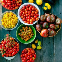 Tomato Gardening For Beginners Tomatoes for Beginners - Tomato Growing Tips - Sunset Mobile - Tricks to ensure a successful harvest―even with late-start seedlings Growing Tomatoes Indoors, Tips For Growing Tomatoes, Growing Tomato Plants, Growing Tomatoes In Containers, Growing Grapes, Growing Vegetables, Fruits And Veggies, Grow Tomatoes, Dried Tomatoes