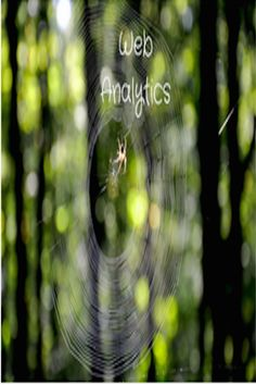 Web Analytics Basics calls for an understanding and optimizing of web usage by means of measuring, collecting, analysis, and reporting of web data. Customer Behaviour, Behavior, Site Information, Web Analytics, Study, Key, Website, Patterns, Collection