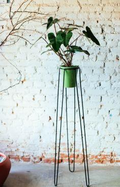 Pé de Planta #2 com Vaso de Cerâmica
