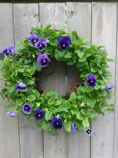 Pansies make such a happy, bright greeting on your door or fence!  http://www.mosserlee.com/product/529_LivingWreath.aspx