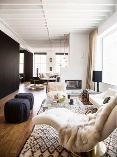 Long Narrow Living Room with Fuzzy Chairs