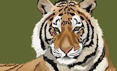 Tiger by Jason