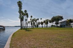 GORGEOUS WATERFRONT LOT IN POPULAR JUNGLE AREA!  It also has additional canal access, private drive and magnificent views!  Last lot off of private drive, providing even more privacy.  This lot is located in the heart of some of St Pete`s most luxurious homes!  Full Details  http://www.stpeteluxurywaterfront.com/listing/mlsid/149/propertyid/U7522400/syndicated/1/cgltguid/C8B2A1F4-5071-42FD-B66D-3C6707460311/?ts=crg  Listing Courtesy of JEFFREY JOYNER, KELLER WILLIAMS ST PETE REALTY