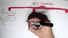 Armando Hasudungan - YouTube