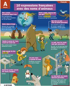 10 expressions françaises avec des noms d'animaux.