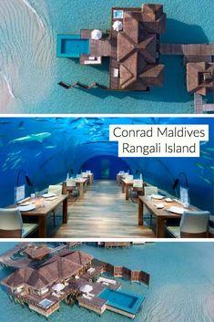Überwasser-Bungalows bei Conrad Maldives Rangali Island – Beaches, Booze, and Bungalows – Join in the world Maldives Vacation, Maldives Beach, Maldives Honeymoon, Vacation Resorts, Best Vacations, Vacation Destinations, Vacation Captions, Island Villa, Overwater Bungalows