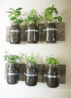 mason-jar-planter-board.  I love this idea on so many levels!  I'd have to add gravel or little rocks on the bottom with a secret straw to help the water evaporate and control mold. Very cute!
