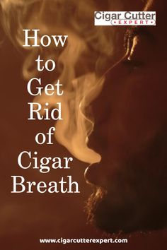 How to Get Rid of Cigar Breath - Real Time - Diet, Exercise, Fitness, Finance You for Healthy articles ideas Good Cigars, Cigars And Whiskey, How To Get Rid, How To Remove, Cigar Ashtray, Cigar Humidor, Nice And Slow, Premium Cigars, Cigar Party