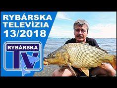 V trinástej epizóde relácie Rybárska Televízia sa venujeme lovu kapra na tzv. slovenskom mori, na Zemplínskej Šírave. Príjemné sledovanie prajeme, Vaša Rybárska Televízia.