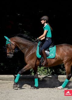 want to look exactly like this except Hunter Green for my 17 HH deep bay gelding. And deep purple and sky blue for my chesnut pony mare