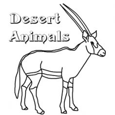1000 images about vbs on pinterest desert animals for Desert animal coloring pages