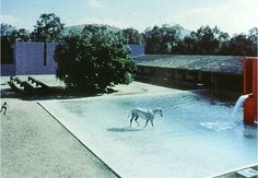 Luis Barragan _ Mexico
