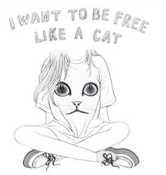 Free like a cat Pastel Grunge, Soft Grunge, Like A Cat, I Love Cats, Crazy Cat Lady, Crazy Cats, Oblyvian Girls, Hipster Quote, Tumblr Png