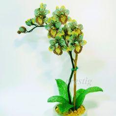 Orhideya 17 (1)