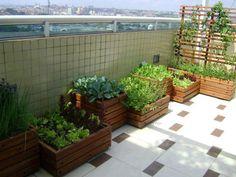 Huertas en las terrazas