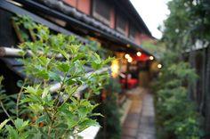 """日本料理小や町 Japanese Restaurant """"Koyamachi"""""""