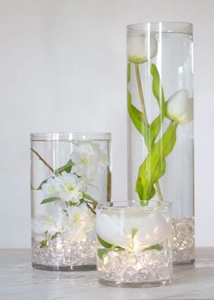 How Herb Back Garden Kits Can Get Your New Passion Started Off Instantly Glass Cylinder Vase Clear Glass Wedding Centerpieces Glass Cylinder Vases, Glass Centerpieces, Wedding Table Centerpieces, Diy Wedding Decorations, Flower Decorations, Centerpiece Flowers, Centerpiece Ideas, Flowers Vase, Wedding Vases