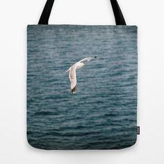 Seagull in Sardinia