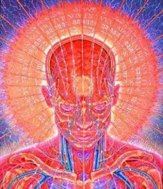 The official website of visionary artist Alex Grey. Alex Grey, Alex Gray Art, Grey Art, Carti Online, Neville Goddard, Process Art, Visionary Art, Sacred Art, Psychedelic Art