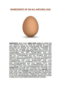 Ingredients of an egg
