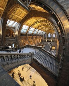 Admiring the architecture of the Natural History Museum in London, England.