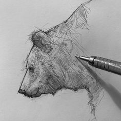 Efraín Malo is a Spanish sketch artist. In his works he makes pencil sketch and gives life to drawings. Animal Sketches, Animal Drawings, Pencil Drawings, Pencil Sketching, Love Drawings, Drawing Sketches, Art Drawings, Drawing Faces, Realistic Drawings