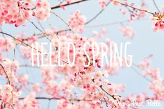 Spring has sprung! This is my favorite time of year. The warm weather, fresh air and everything is beginning to bloom! Follow me on Instagram and Twitter for the launch of peuapeubelle.weebly.com!  #flowers #spring #spring2k16 #blooming #blossoms #warmweather #peuapeubelle #designsbyanna #bloggerinthemaking #bloggerlife #lifestyleblogger #life #experiences #littlebylittlebeautiful #beautiful #experienceeverythingwithpeuapeuebelle