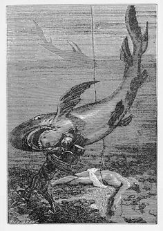 Think we don't know much about shark behavior? In the 17 and 18 hundreds it was even worse! They were killed on site as man eaters!