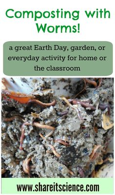 Share it! Science News : Composting with Worms! A Great Activity for S. - Share it! Science News : Composting with Worms! A Great Activity for School or Home. Earth Science Lessons, Science Activities For Kids, Easy Science, Spring Activities, Science News, Science Experiments Kids, Insect Activities, Steam Activities, Stem Fair Projects