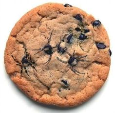 Hi! We Are Spiders @hiwearespiders 8m Here's an awesome Halloween trick. Make some chocolate chip cookies and then use a toothpick to make legs!
