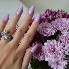 "Ciate London ""Sugar Plum"""