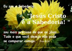 Momento Versículos : Jesus Cristo é a Sabedoria - Prov 8.14
