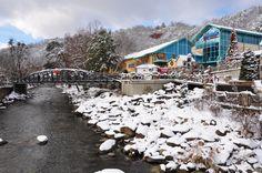 Ripley's Aquarium of the Smokies covered in beautiful snow!