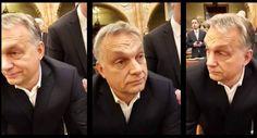 Újabb kudarc a Fidesznek: most az amerikai döntéshozatal fog szavazni az Orbáni-politikát elítélő jelentésről Pilot, Mens Sunglasses