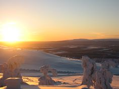 Levi in Lapland, pure, natural beauty... and bloody cold too!