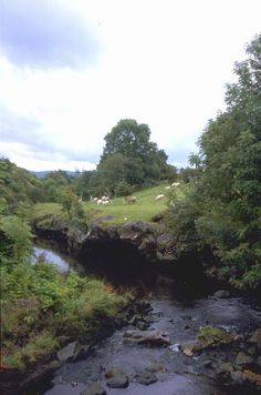 idyllic Irish countryside