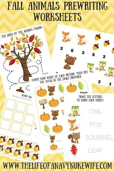 Adorable Fall Animals, Pumpkins, Squirrels, owls, foxes, leaves, trees and acorns