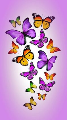 42 New Ideas for flowers orange beautiful butterflies Purple Butterfly Wallpaper, Butterfly Background, Butterfly Art, Butterfly Kisses, Flower Art, Butterfly Painting, Cellphone Wallpaper, Iphone Wallpaper, Butterfly Template