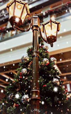 große straßenlampe festlich dekorierter weihnachtsbaum festliche stimmung hübsche hintergrundbilder handy weihnachtsbilder