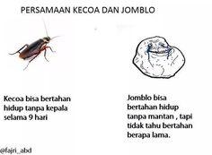 kecoa vs jomblo