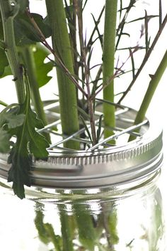 How to make mason jar frog lids (never knew that's what they were called, but it's the criss-cross grid at the top of a vase to keep all your flowers from just leaning to the one side).  Neat!