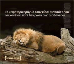 Lessons Learned in LifeNo one ever asks. - Lessons Learned in Life Lessons Learned In Life, Life Lessons, Lion Love, Chinese Proverbs, Lion Tattoo, I Love To Laugh, Greek Quotes, Some Words, Favorite Quotes