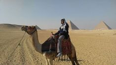 Egypt Tour Package WWW.egypttravel.cc Cairo Packages - Best offers on Cairo Tours & travel packages at egypttravel.cc.