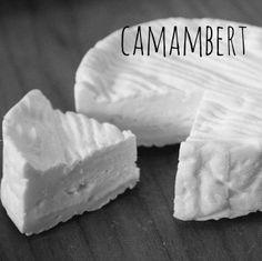Camembert Cheese Recipe   Omnom Cheese Making   Sydney   Australia